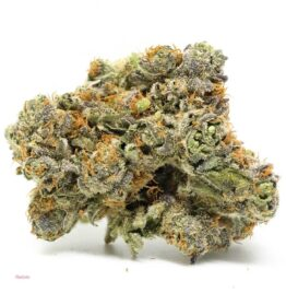 Buy gelato weed strain Illinois, Legit weed delivery dispensary Chicago, where to find weed in Aurora, Naperville real weed shop, Get medical marijuana here.