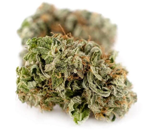 Buy girl scout cookies online Ramapo, Marijuana dispensary Amherst, Buy THC weed Smithtown, Buy CBD weed Albany, Legit weed delivery dispensary Greece.