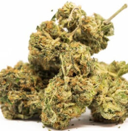 Buy weed online, weed delivery, cannabis delivery, marijuana delivery, recreational weed, Georgia, Augusta, Arizona, Tempe, Knoxville.
