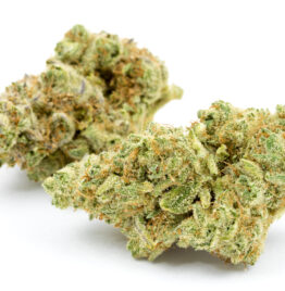 Buy jungle cake weed strain, jungle cake strain info, jungle cake strain review, jungle boys weed in all cities in USA, UK, Canada, Germany.