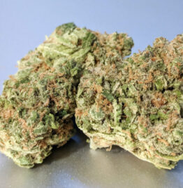 Buy platinum girl scout cookies, platinum girl scout cookies strain, platinum girl scout cookies seeds in all cities in USA, UK, Canada.