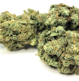 buy violator kush, violator kush strain, violator kush weed thc level, bud, in all cities in usa, canada, uk, mexico, france, germany