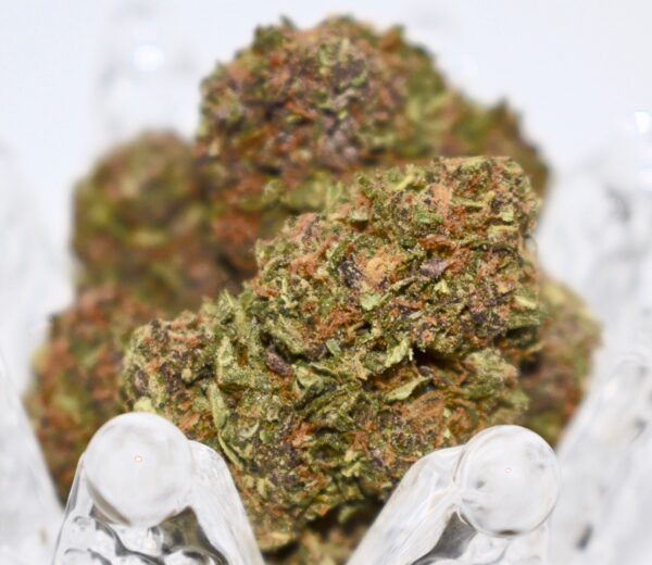 buy grape pie weed strain, grape pie strain, grape pie strain leafly, grape pie strain info, review, in all cities in usa, canada, uk, au, ie